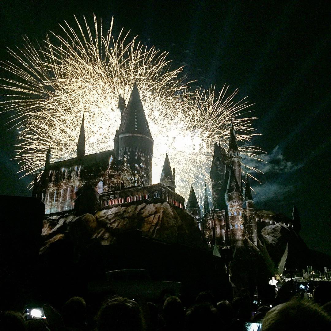 The Wizarding World of Harry Potter Premiere